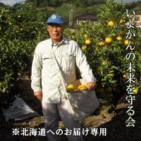 いよかんの未来を守る会(頒布会)(北海道へのお届け専用)