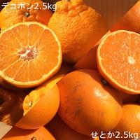 【5kg】味くらべセット(デコポン&せとか)