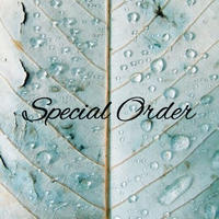 Special order for Y様