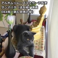 スマナサーラ長老のダンマパダ講義084(MP3音声)