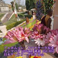 スマナサーラ長老のダンマパダ講義054-55(MP3音声)
