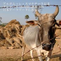 スマナサーラ長老のダンマパダ講義 030(MP3音声)