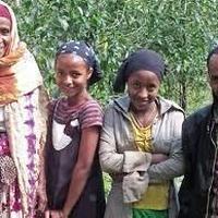 エチオピア ジンマ ナノ・チャラ ステーション