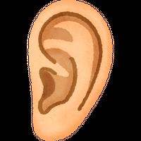耳 高解像度版 / ear