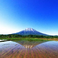 Niseko Sightseeing Ceramic art experience (Guide 6H)