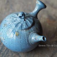 白岩大佑柴焼急須 SHIRAIWA TAISUKE Spiral  Wood-fired Kyusu Teapot