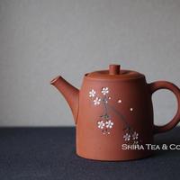 都築青峰朱泥樱花后把壶急須 SEIHO TSUZUKI Sakura Teapot (145ml ) KYUSU