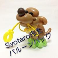 【教室用資材】Balloon-Syotaro先生のバルーンパック【中・上級】「お散歩おねだりわんこ」