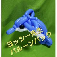 【教室用資材】風船師ヨッシー先生のバルーンパック【中~上級】「2匹でラブラブ♥イルカさん」