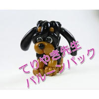 【教室用資材】風船おじさんてりやき先生のバルーンパック【中・上級】「子犬」