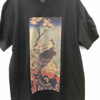T-2014葛飾北斎「桜に鷹」T-シャツ黒