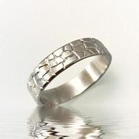 【Ti】Defense wall Ring (鍛造制作リング 価格一律)