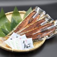 鹿児島県大隅産うなぎ蒲焼3尾セット【送料無料】