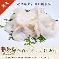生白いきくらげ(300g)