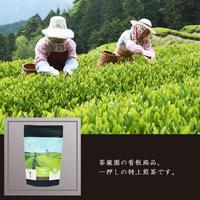 春摘み一番茶 3g×9ヶ/ティーバッグ