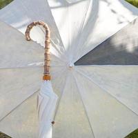 しけ絹の日傘(麻炭1/9)