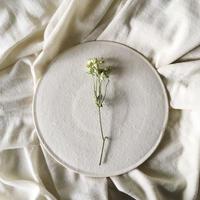 陶器のプレート(off-white)