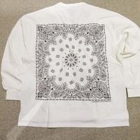USW HAVA・A・HANK 長袖Tシャツ 613411