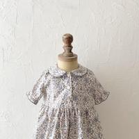 Dorothy dress / culloden vine