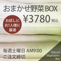 おまかせ野菜BOX - Sサイズ