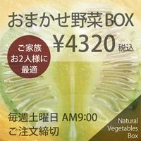 おまかせ野菜BOX - Mサイズ
