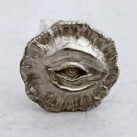 micro eye pierce[human remains.]