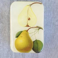 [FireflyNotes] Tin Small Botanical Pear