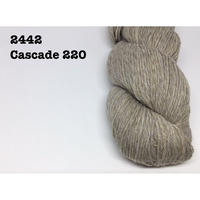 [Cascade] Cascade 220 - 2442(Fog Hatt)