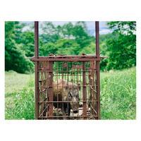農園フォトギャラリー013