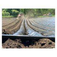 農園フォトギャラリー011