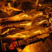 魚 taka-0004