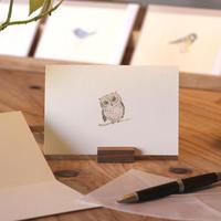 小鳥のカード「コノハズク 」