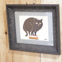 The Black cat(クロネコ)