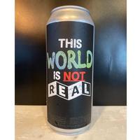 ヴェイル/ジスワールドイズノットリアル_The Veil/ This World is Not Real