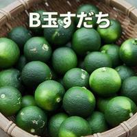 """産直限定品!B玉すだち""""3kg"""""""