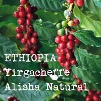 【200g】エチオピア イルガチェフェ アリーシャ ナチュラル(中煎り)