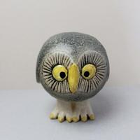 Owl(s)  / フクロウ