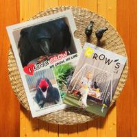 【NEW!】「CROW'S」4号と「カラス写真アワード受賞作★LOVE CROW クリアファイル」のセット(限定70組)