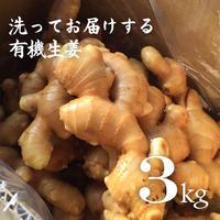 有機生姜(生鮮)洗い 3kg