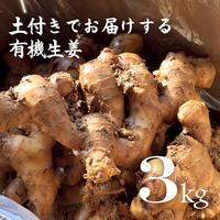 有機生姜(生鮮)土付き 3kg