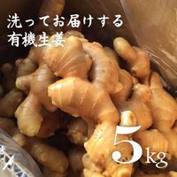 有機生姜(生鮮)洗い 5kg