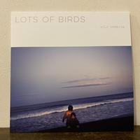 LP「Lots of Birds」Koji Shibuya 限定重量盤セカンドプレス