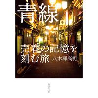 八木澤高明『青線 売春の記憶を刻む旅』