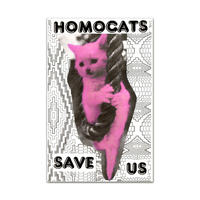 SAVE US / HOMOCATS
