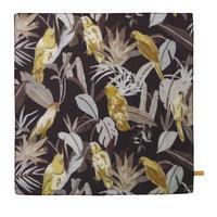 Handkerchief Parrot オウム