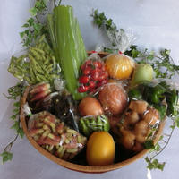 旬の野菜・果物セット(須崎市産)