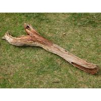●国内産 流木(J)78cm