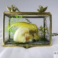 硝子小箱のネックレス(オカメインコ)