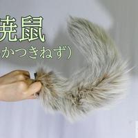 くるりん☆けもののしっぽショート(暁鼠)