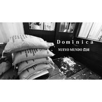 送料510円 コーヒー豆 ドミニカ ヌエボ ムンド農園 シティ200gパック